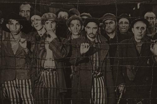 banner_Holocaust-700x466-500x333