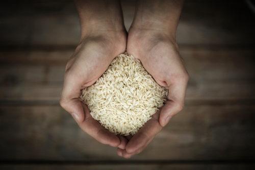 hands-rice-500x333
